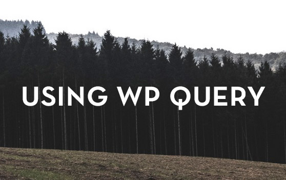 WP Query