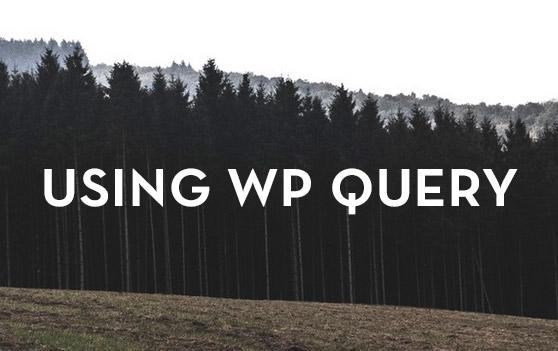 Understanding & Using WP Query